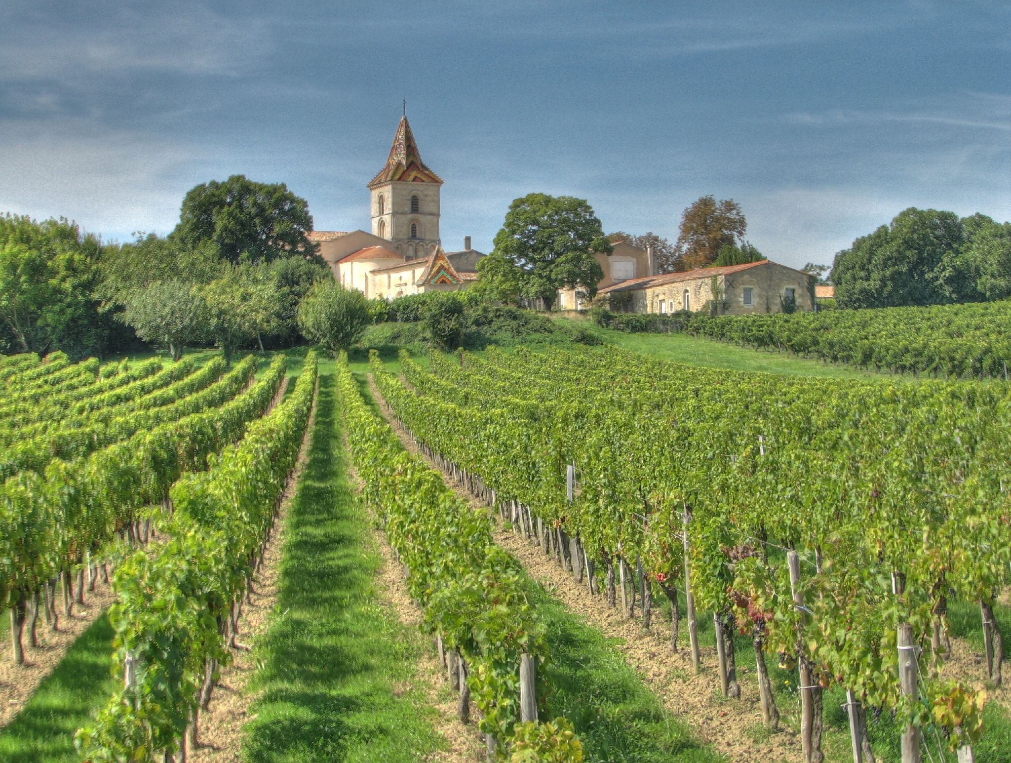 One Of The Best Vineyard in Languedoc-Roussillon
